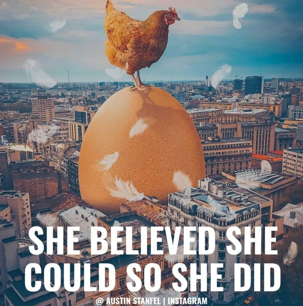SHE BELIEVED SHE COULD SO SHE DID. - Austin Stanfel